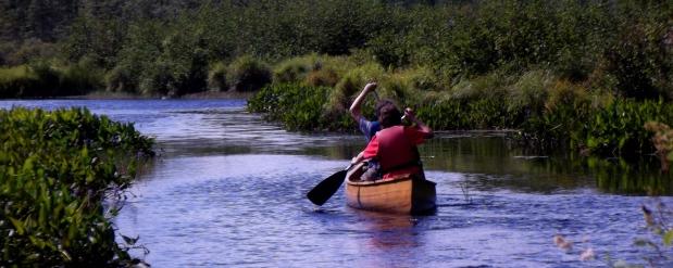 canoe up stream 2