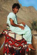 407px-Badawit_naqib